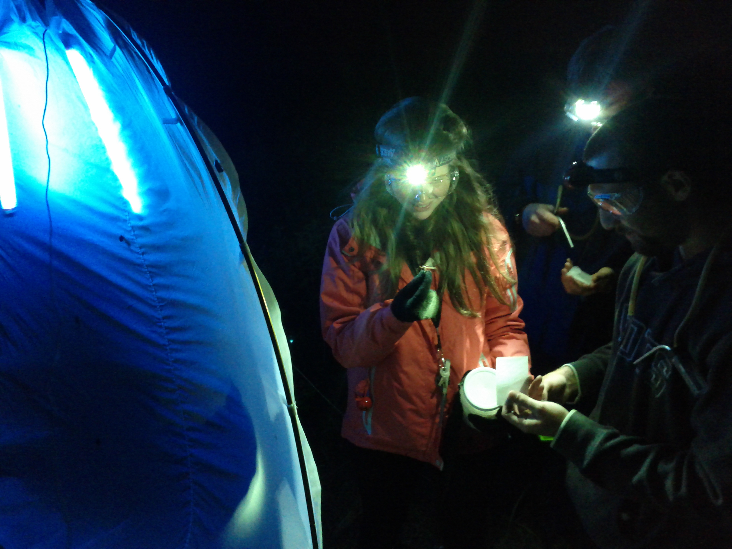 Katelyn Lutes, Graham Ansell, and Martin Zlatkin sampling at a night sheet off of Tweedie Trail, Kouchibouguac National Park.