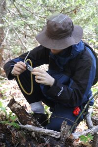Graham Ansell discovering the miniature world inside a log on East Branch Trail, Fundy National Park, NB.