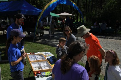 Kate and Joey teaching some families all about the insect world at the Pender Island farmer's market.