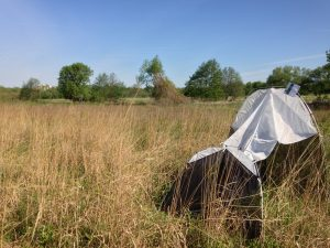 A malaise trap at the rare Charitable Research Reserve