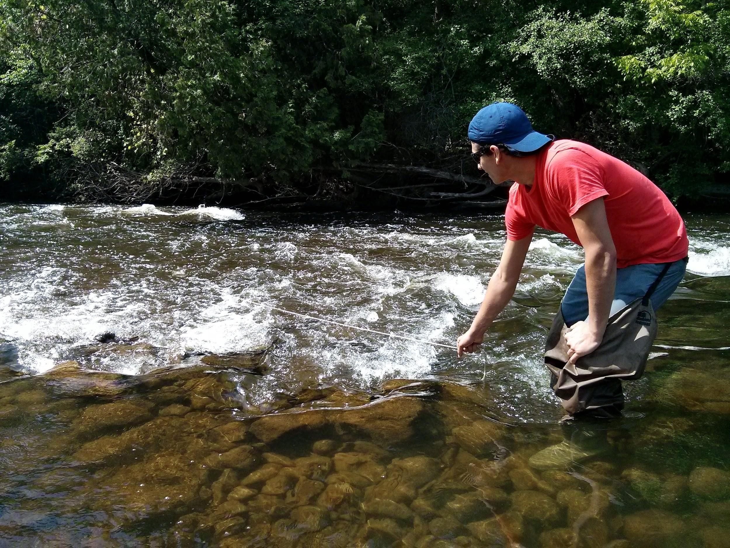 Acquiring a plankton sample with the plankton tow net in shallow flowing water at the Speed River collecting site - Crane Park, Guelph, Ontario.