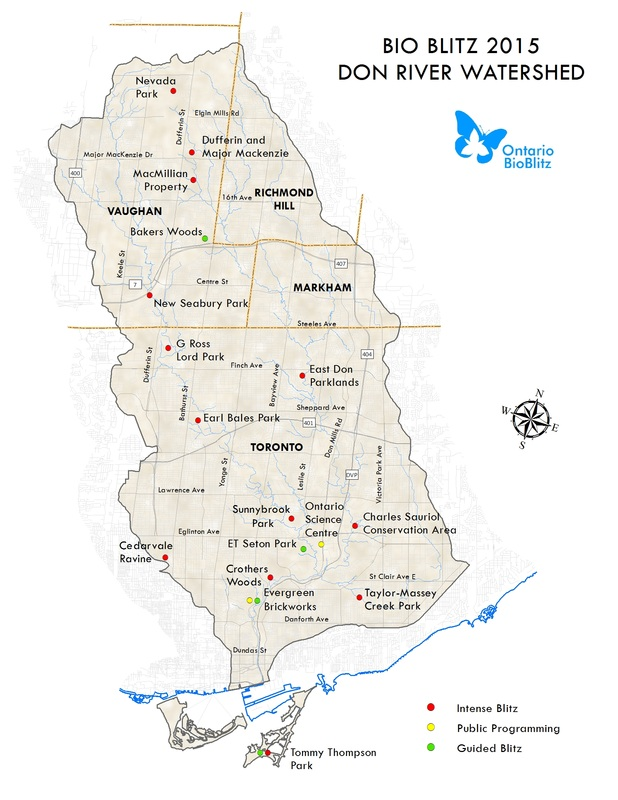 Here's a map of the sites that were surveyed during this year's BioBlitz