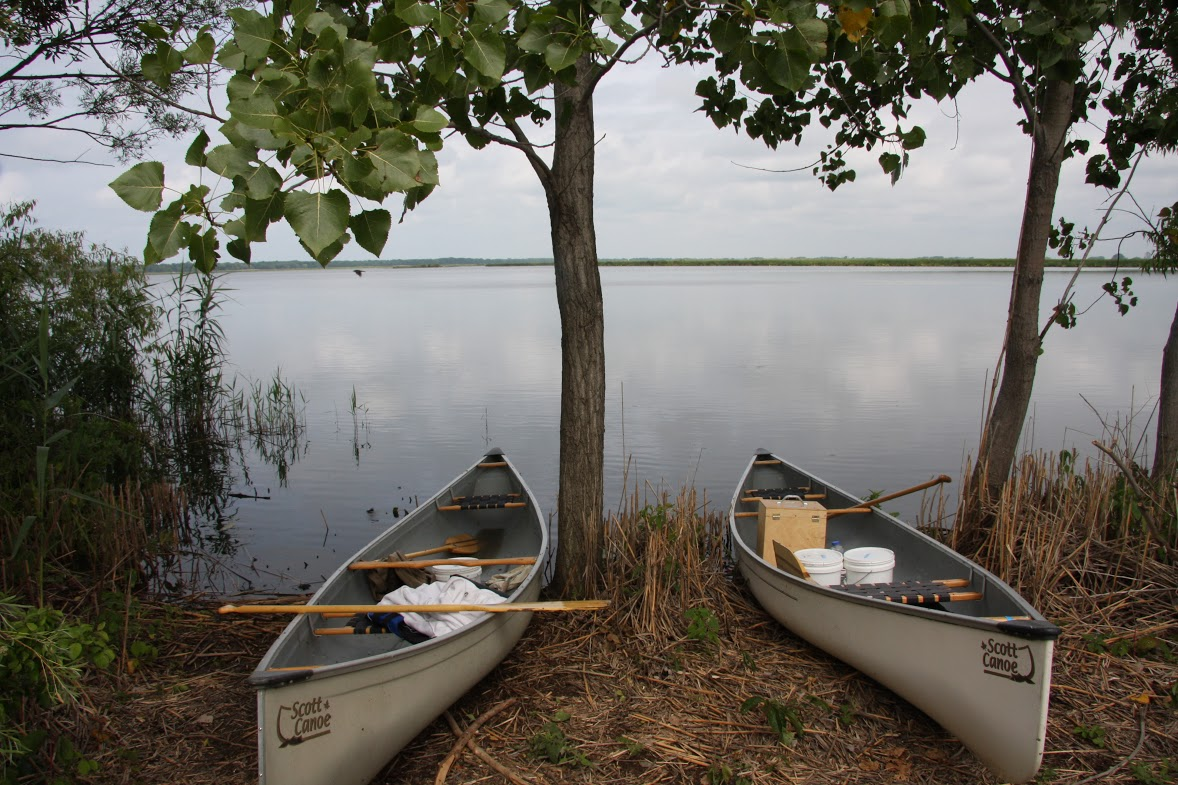 Our canoes on the shore of Lake Pond, full of sampling gear!
