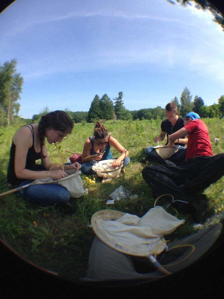 In this photo, we are all aspirating at one of our grassland sites at rare. From left to right: Shannon, Anais, Thibault, and myself. Thanushi kindly took the photo for us.